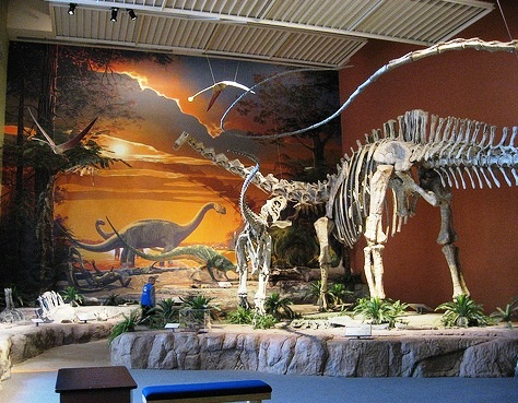 -New-Mexico-Museum-of-Natural-History-and-Science_Interior-exibits_11005.jpg